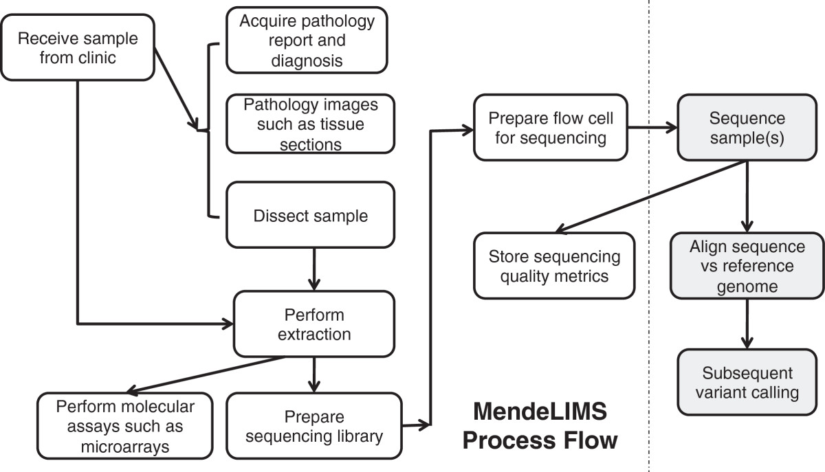 Journal Mendelims A Web Based Laboratory Information